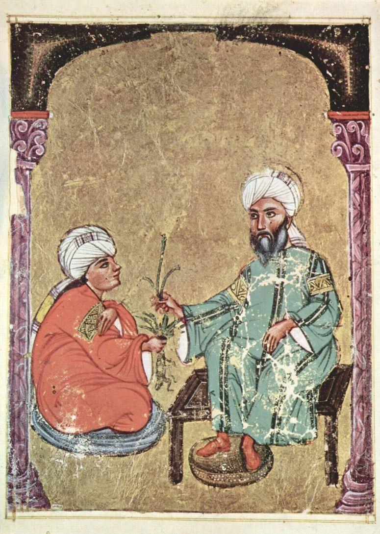 1200px-arabischer_maler_des_krc3a4uterbuchs_des_dioskurides_004